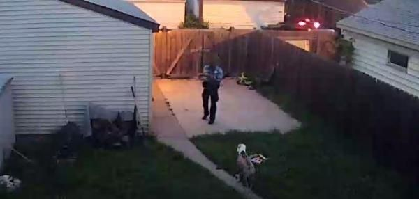 A Minneapolis Police Officer Was Caught On Video Shooting Two Dogs When He Entered The Backyard Of A Home To Check Service Dogs What Dogs Emotional Support Dog