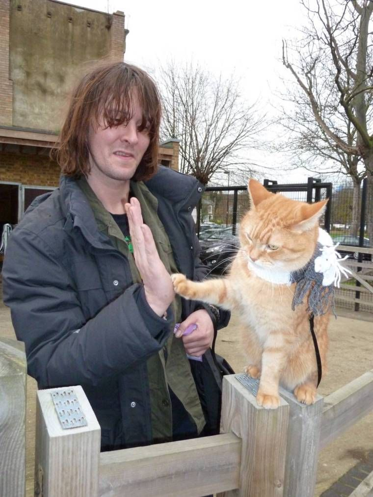 Events An evening with James Bowen and Streetcat Bob in