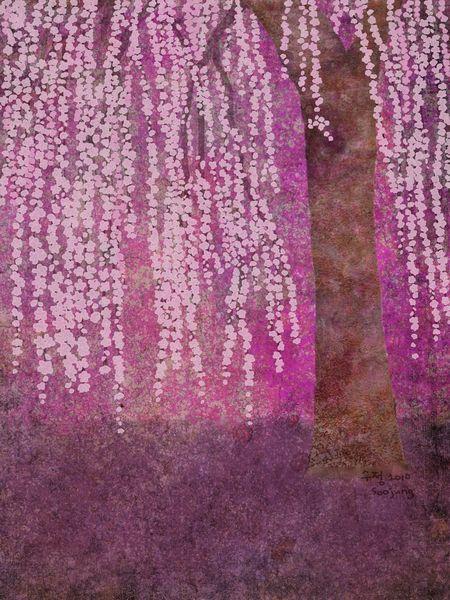 Weeping Cherry Blossom Tree Digital Artwork Cvety Grafika