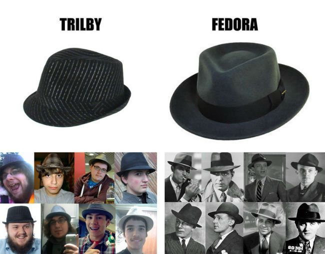 fb66fe96801 trilby vs fedora know the difference | Memes | Trilby hat, Hats, How ...