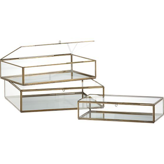 Clarus Small Brass Display Box + Reviews   Crate and