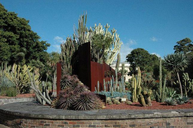 3eaf9fbd60fbda49312a5695b98a51b9 - What To Do In Royal Botanic Gardens Sydney