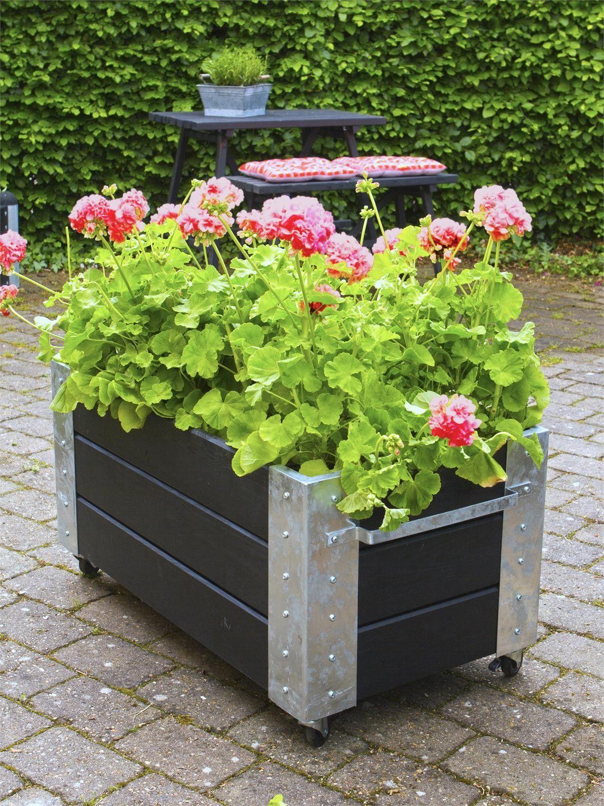 Blumenkasten Hochbeet Kdi Grundiert Fahrbar 87x50x45 Cm Plus Blumenkasten Hochbeet Blumenkasten Landhaus