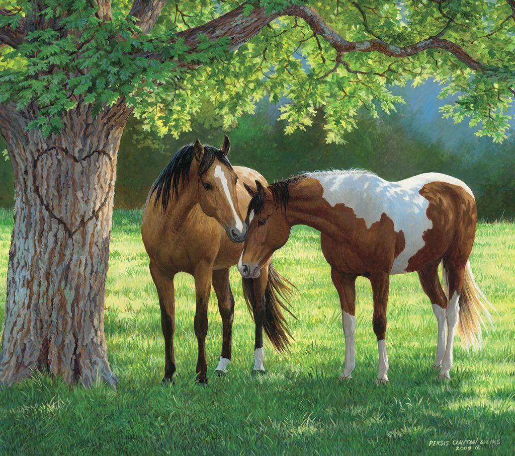 lang desktop horses in the mist art lang desktop 2015 horses in the mist