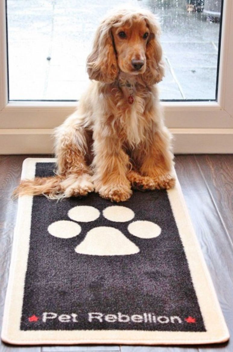 Dog Floor Rug And Floor Mat To Stop Those Muddy Paws