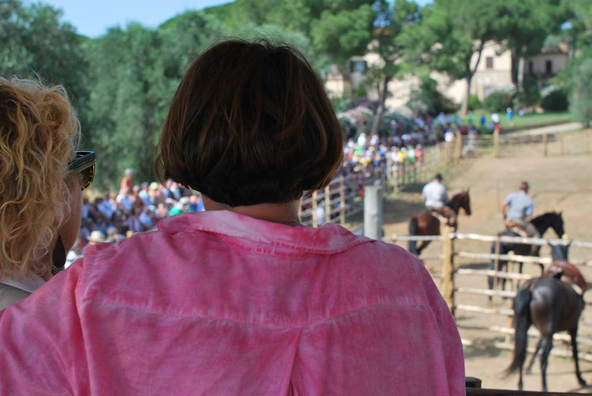 In Fattoria dove alleviamo vacche e cavalli maremmani, si svolge uno spettacolo che ripropone, il lavoro del Buttero