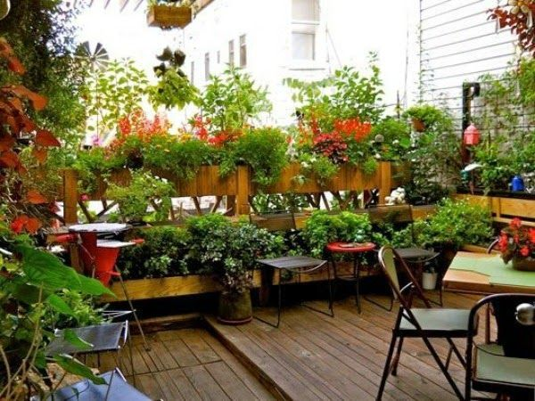 3eb1f836d95300fc937c6df8550423b0 - What Is The Purpose Of Terrace Gardening