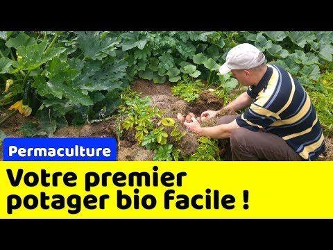 Votre Premier Potager Bio Et En Permaculture A Partir De Zero Youtube Potager Bio Permaculture Potager
