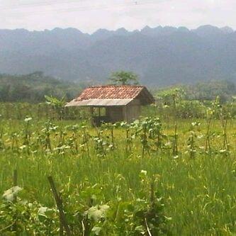 Rowokele ,Kebumen  ,Central Java