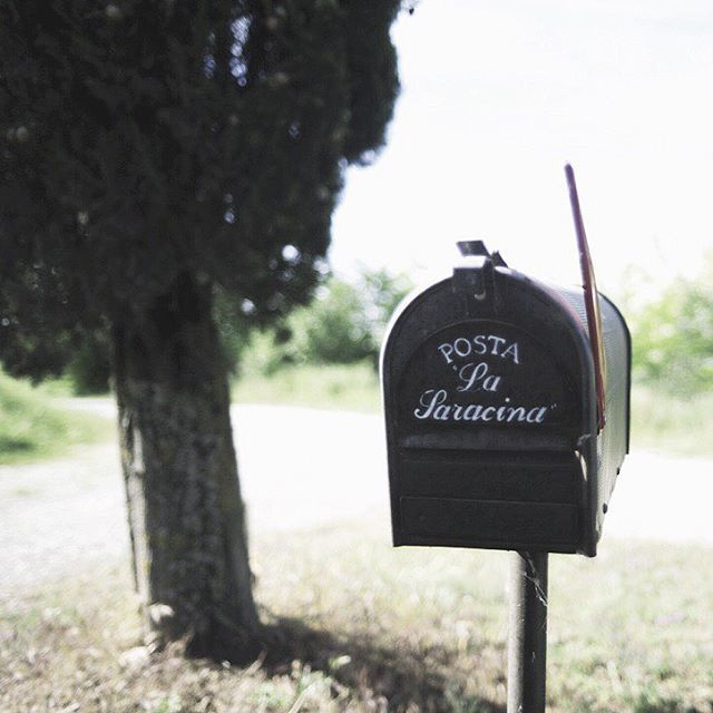 If it feels like home than follow it's path.. #lasaracina
