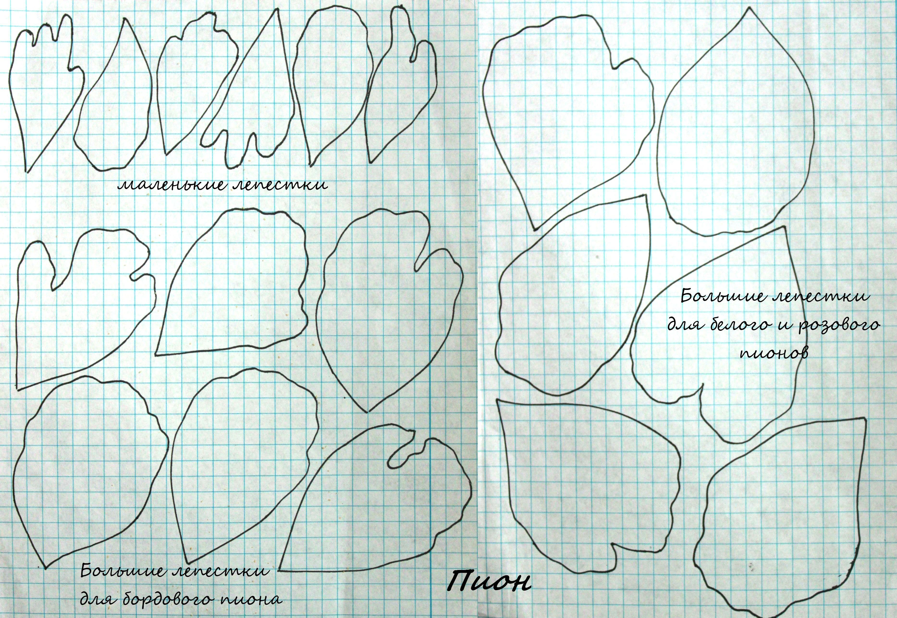 просто клуб, цветы из фоамирана картинки с шаблонами это