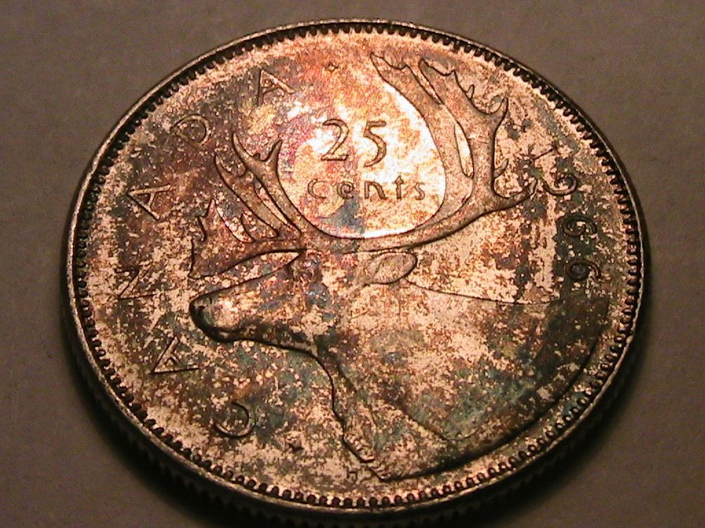 1966 Canada monster toned Moose 25 Cents Gem BU+ Album Tone