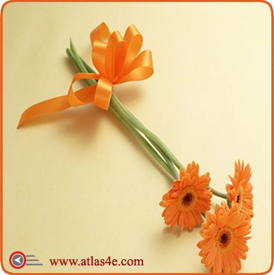 بطاقات ورد بطاقات اطلس للمعايدة والمناسبات السعيدة عام سعيد تهنئة بالعيد كل عام و لنتم بخير ازهار ورود Flower Gift Friendship Day Wishes Flower Pictures