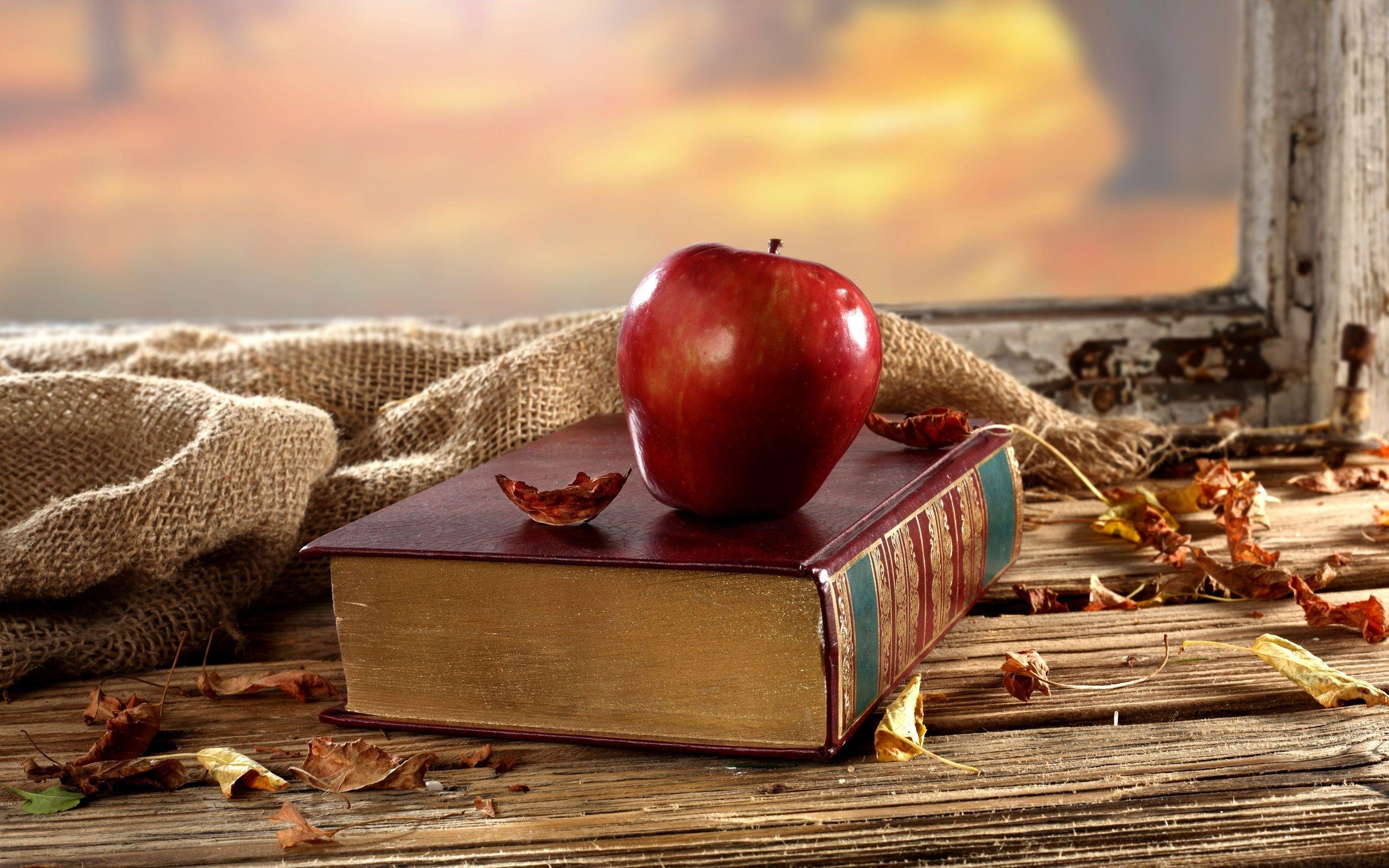 古い本 赤いリンゴ 机 窓 乾燥した葉 壁紙 2560x1600 壁紙ダウンロード 赤いリンゴ リンゴ 壁紙ダウンロード