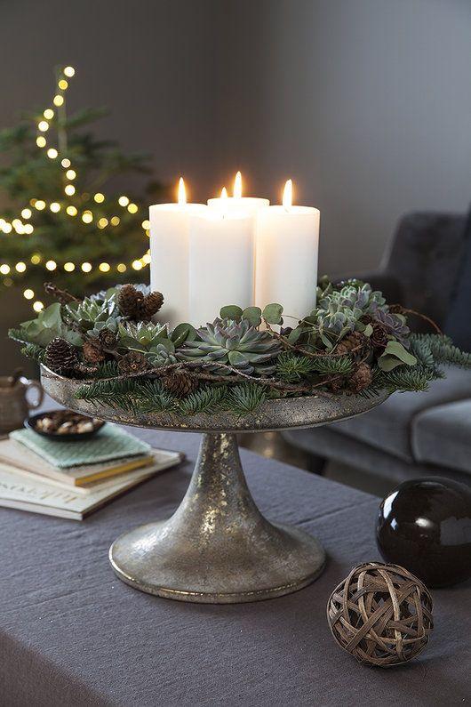 Pynt med vintergrønne planter inne | Inspirasjon fra Mester Grønn