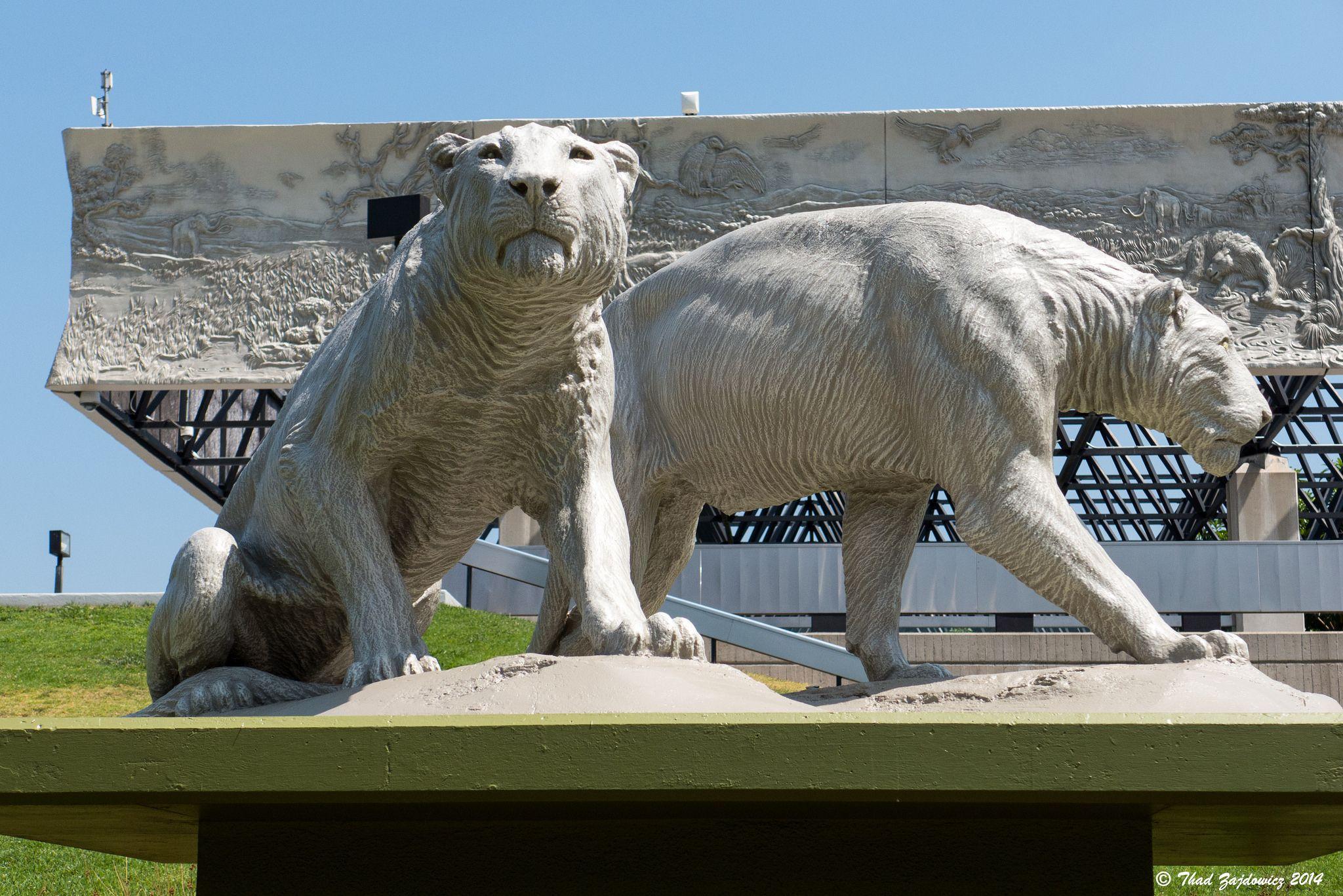 Lion sculptures | Lion sculpture, American lion, Lion