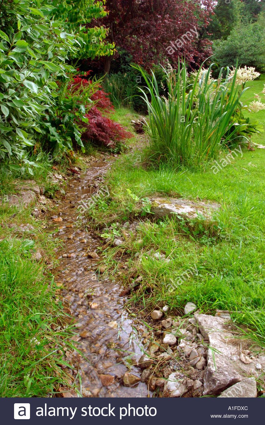 Download this stock image: Small UK garden stream water ...