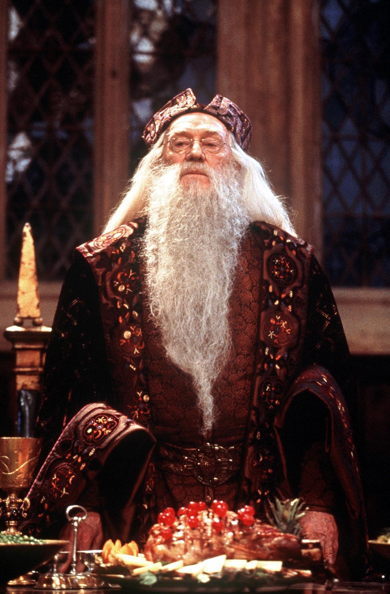 alvo dumbledore o mundo m193gico de harry potter