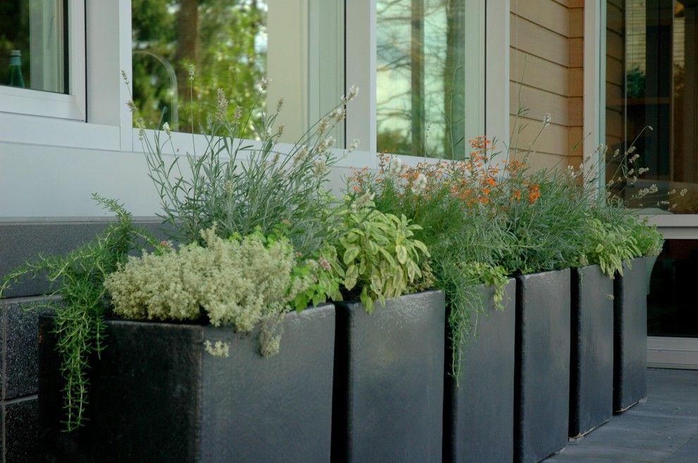 Interesting Use Of Repeated Circular Planting Areas In A Large Garden  (Silvia Ghirelli). | Garden Design Ideas | Pinterest | Large Containers,  Planting And ...
