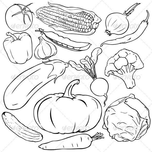 Vector Set Of Vegetables Vegetable Drawing Rock Painting Patterns Outline Drawings