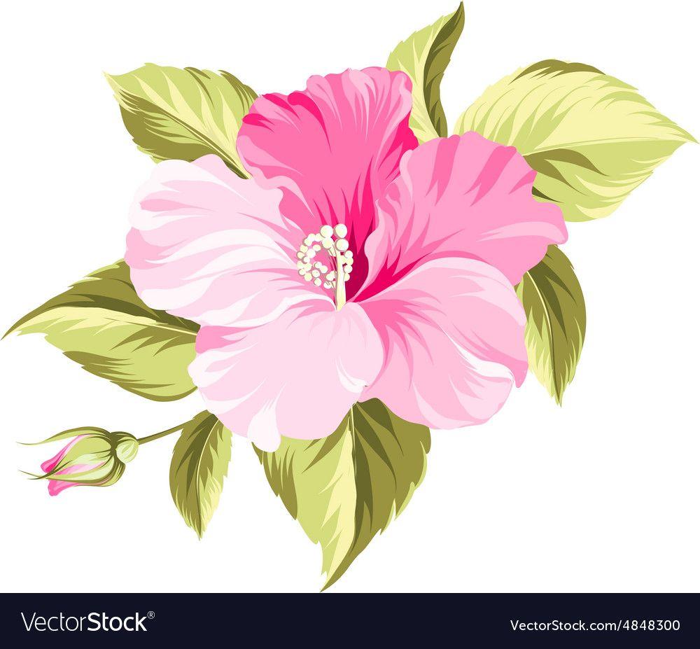 pinaudra simpson on marketing  flower art acrylic