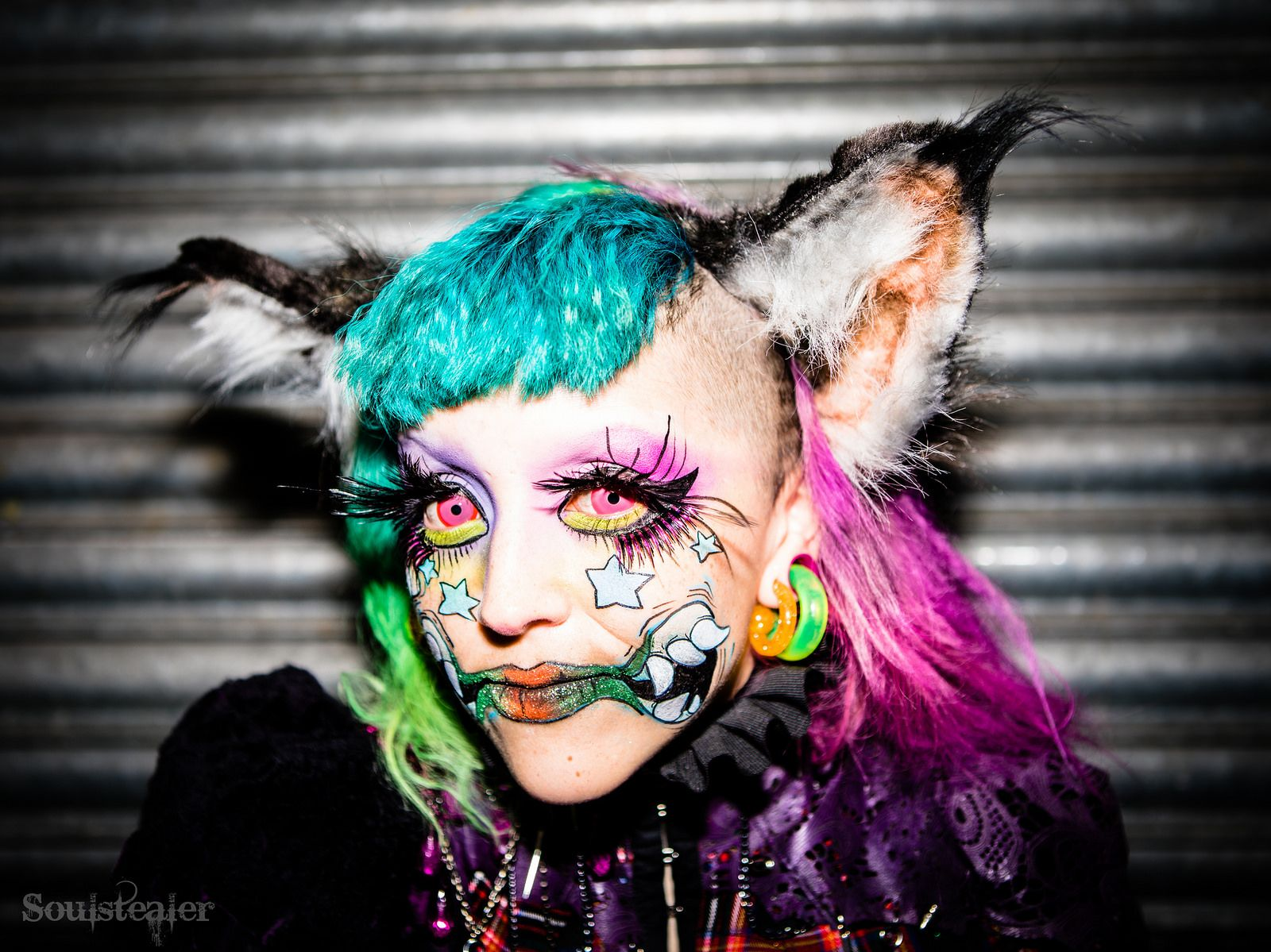 Stray Cat Stray cat, International makeup artist, Cats