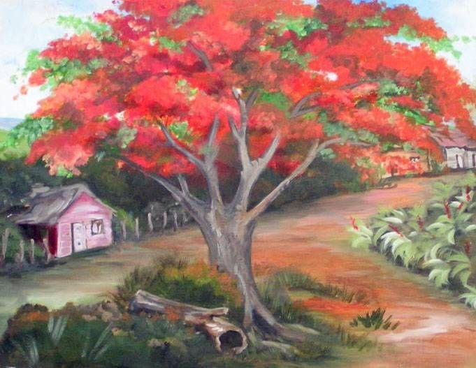 Pintura De Un Flamboyán Rojo En Puerto Rico Imágenes De Mi Isla