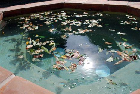 pool chlorine, swimming pool chlorine, how to shock a pool ...