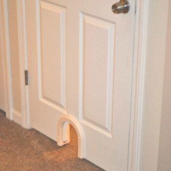 Cat Door Indoor Access Cat Door At PETCO