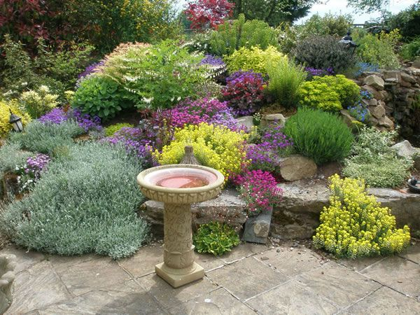 Creative Landscapes Over 30 Years Experience In Garden Design And Landscaping For Clients Full Desi With Images Garden Design Pictures Small Garden Design Small Gardens