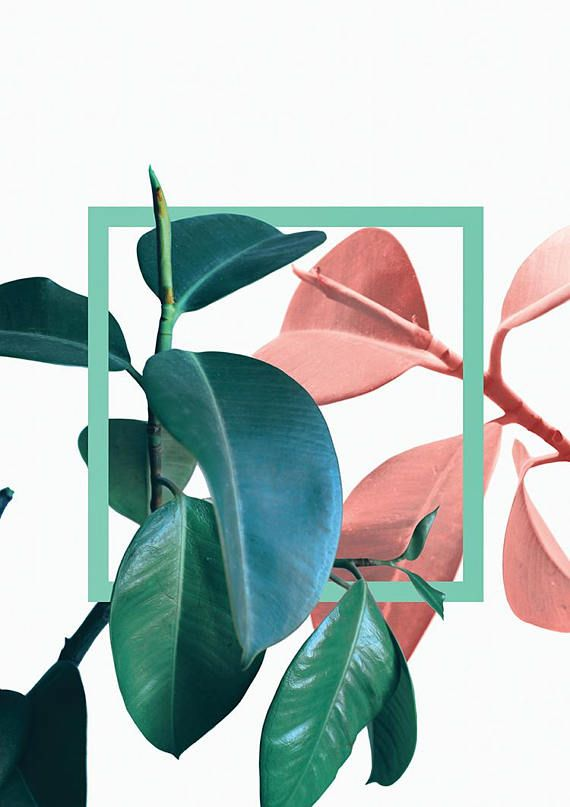Plants Print Digital Download No Waiting For Shipping A Quick And Affordable Way To Add Beautiful New Artworks Free Wall Art Wall Art Designs Dreamy Artwork