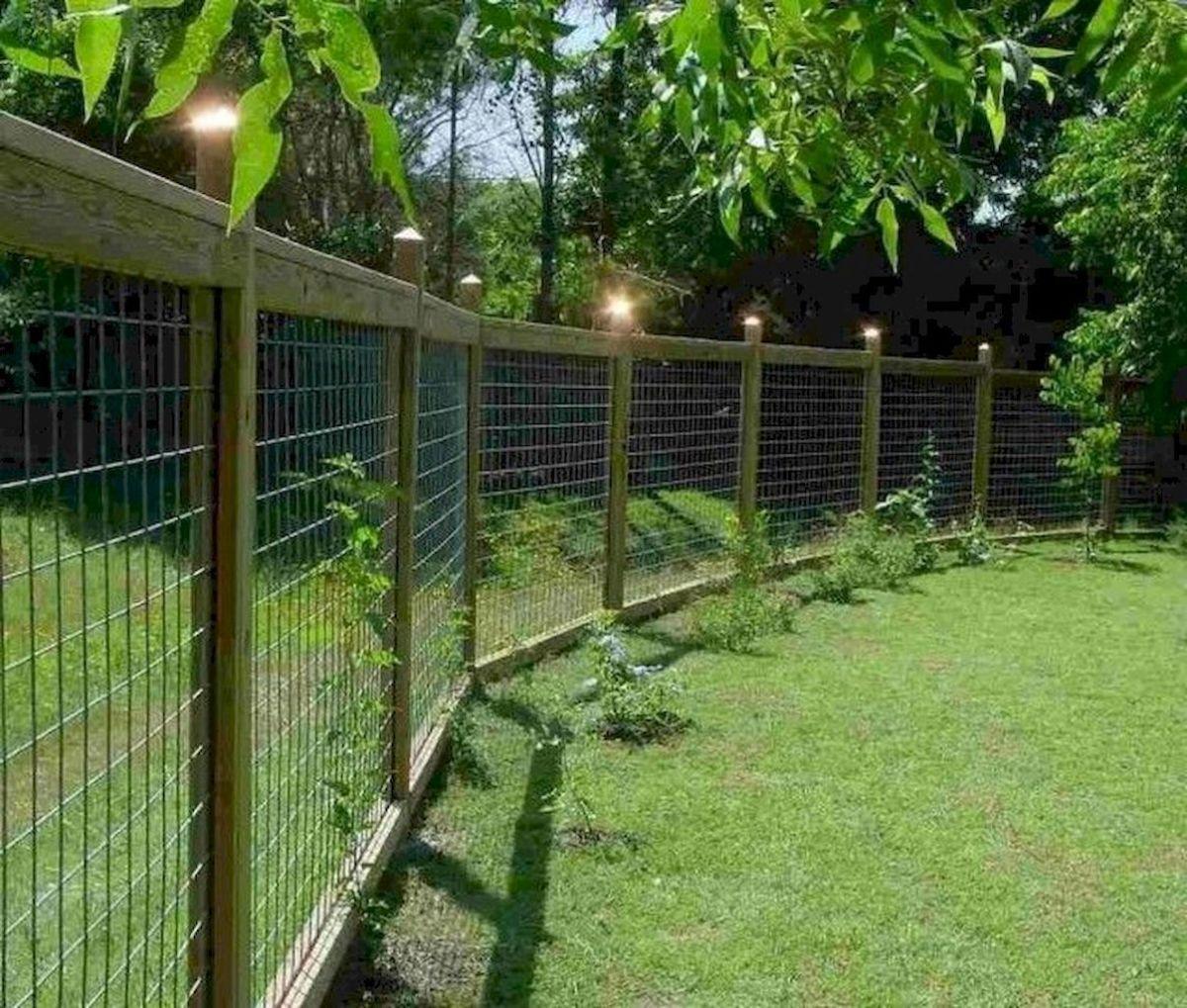 01 diy backyard privacy fence design ideas on a budget