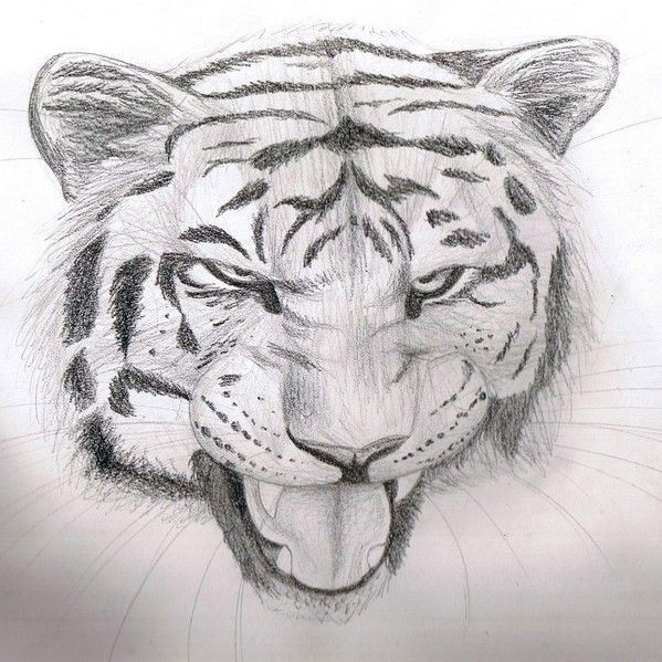 Cool easy pencil drawings design images