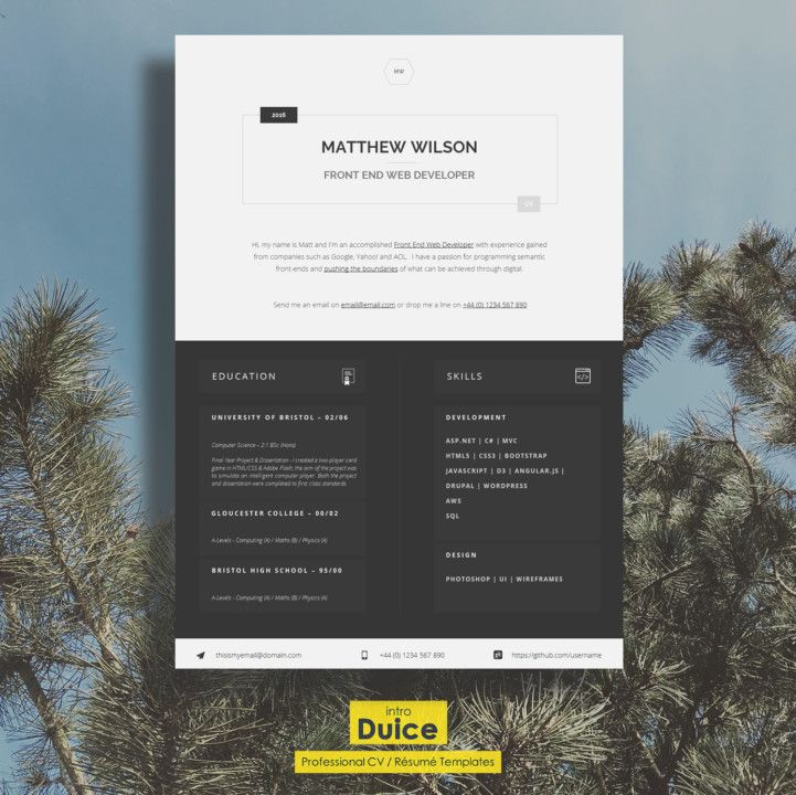 Front End Web Developer Resume Template front end developer