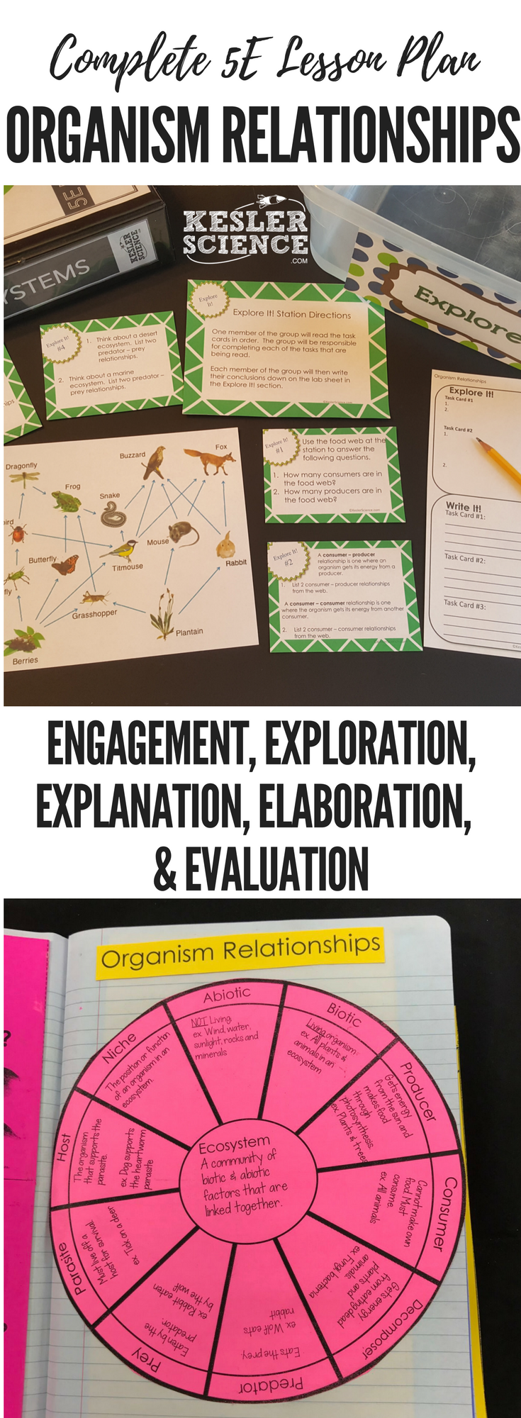 Organism Relationships 5E Lesson Plan ready to print and ...