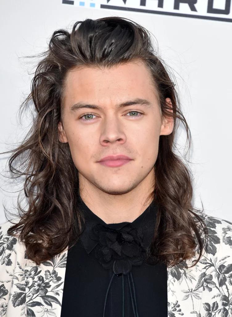 Harry Styles Hair 2020