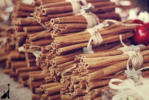 ~ Cinnamon Christmas Spice ~