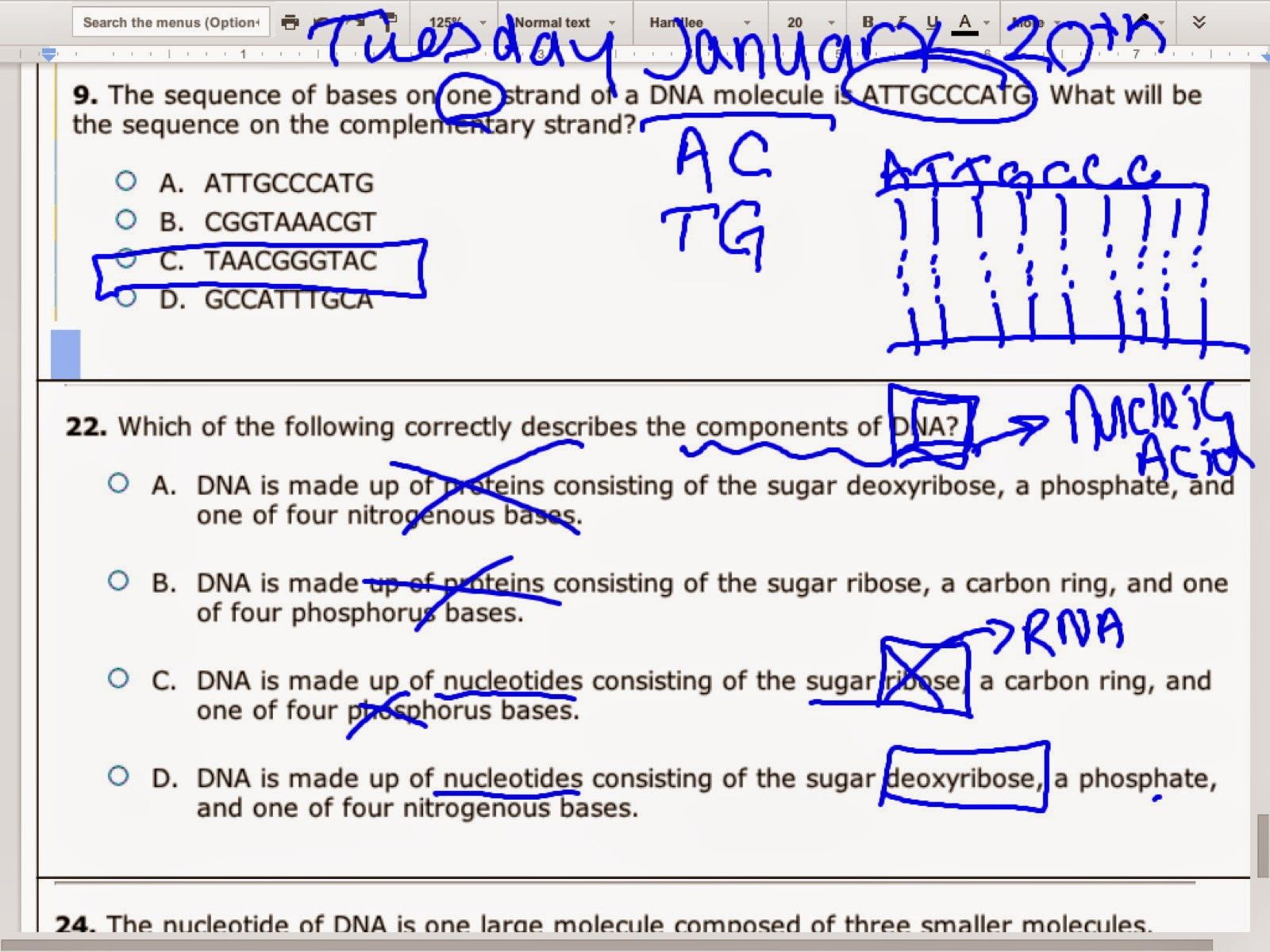 Recentofficial Dna Structure And Replication Worksheet