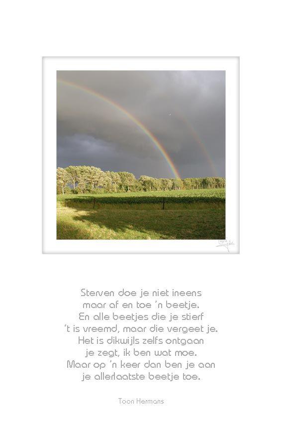 36 Regenboog Sterven Doe Je Niet Ineens Toon Hermans 50x75cm