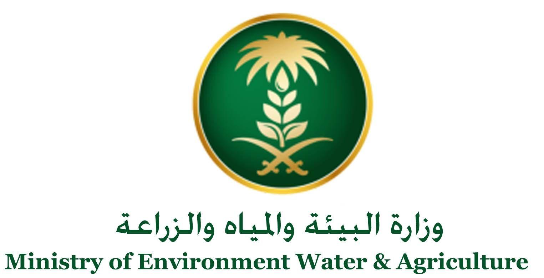 السعودية تستورد شحنة أغنام من رومانيا لتعزيز الأمن الغذائي Environment Agriculture Movie Posters