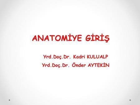ANATOMİYE GİRİŞ Yrd.Doç.Dr. Kadri KULUALP Yrd.Doç.Dr. Önder AYTEKİN.