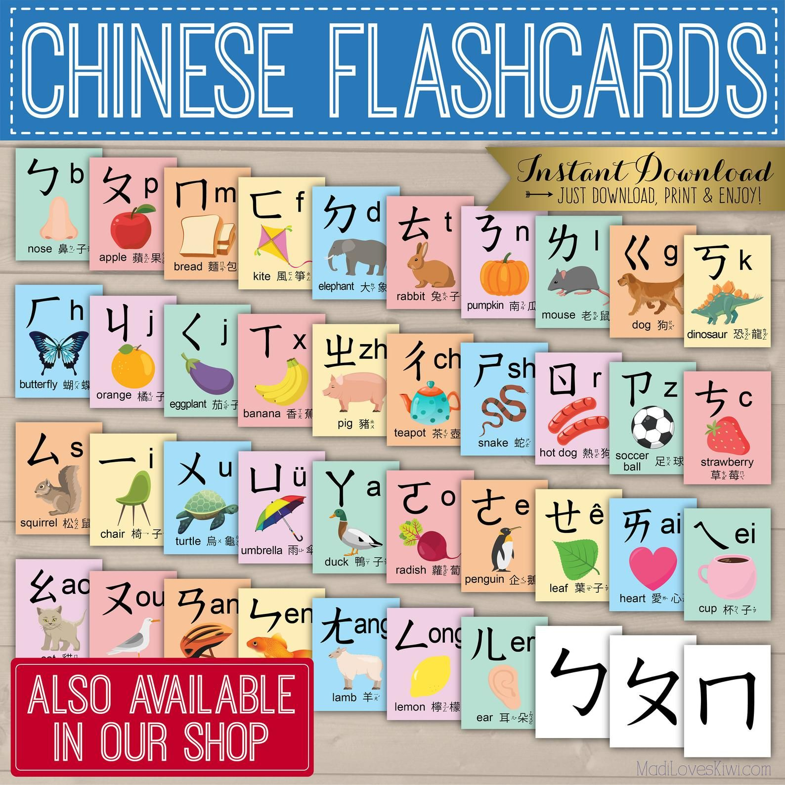 Chinese Alphabet Flashcards Double Sided Bopomofo Card