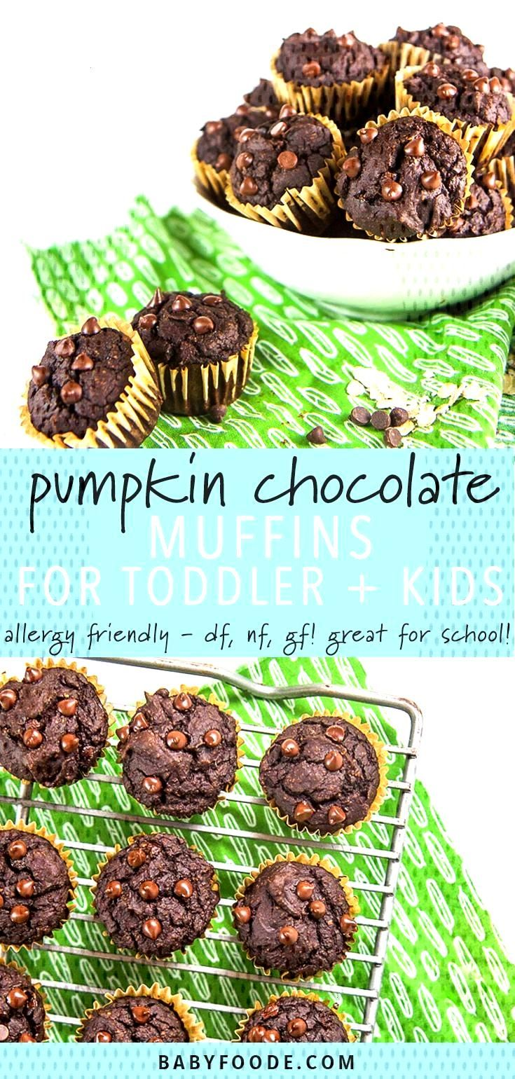 Allergy-Friendly Pumpkin Chocolate Muffins for Toddler + Kids (perfect for school snacks + lunches)