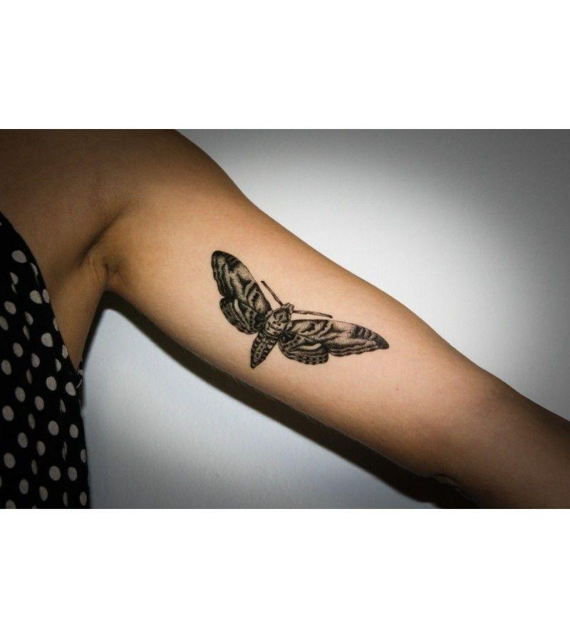 Deux planches de tatouages temporaire papillons pour seulement 3 50 frais de port gratuit et - Thomann frais de port gratuit ...