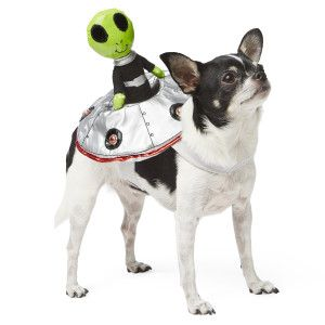 Top Paw™ Pet Halloween Alien Rider Costume | Costumes | PetSmart  sc 1 st  Pinterest & Top Paw™ Pet Halloween Alien Rider Costume | Costumes | PetSmart ...
