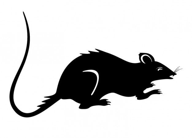 Freepik Graphic Resources For Everyone Rat Silhouette Mouse Silhouette Rats