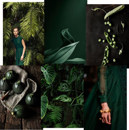 MONDAY MOOD BOARD ⎬ GREEN ATTITUDE