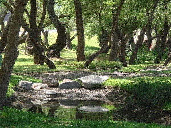 jardines - senderos de monteverde