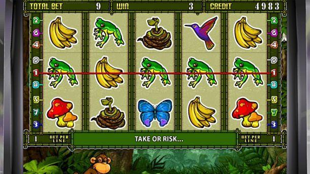 игры от crazy monkey studios