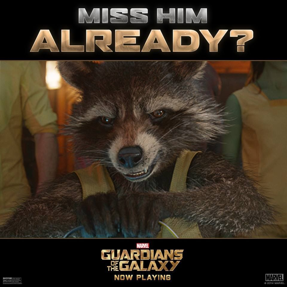 Miss Him Already?  Guardians of the Galaxy